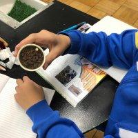 火山の学習