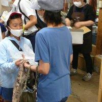 みずほの村市場との連携~3年生総合的な学習
